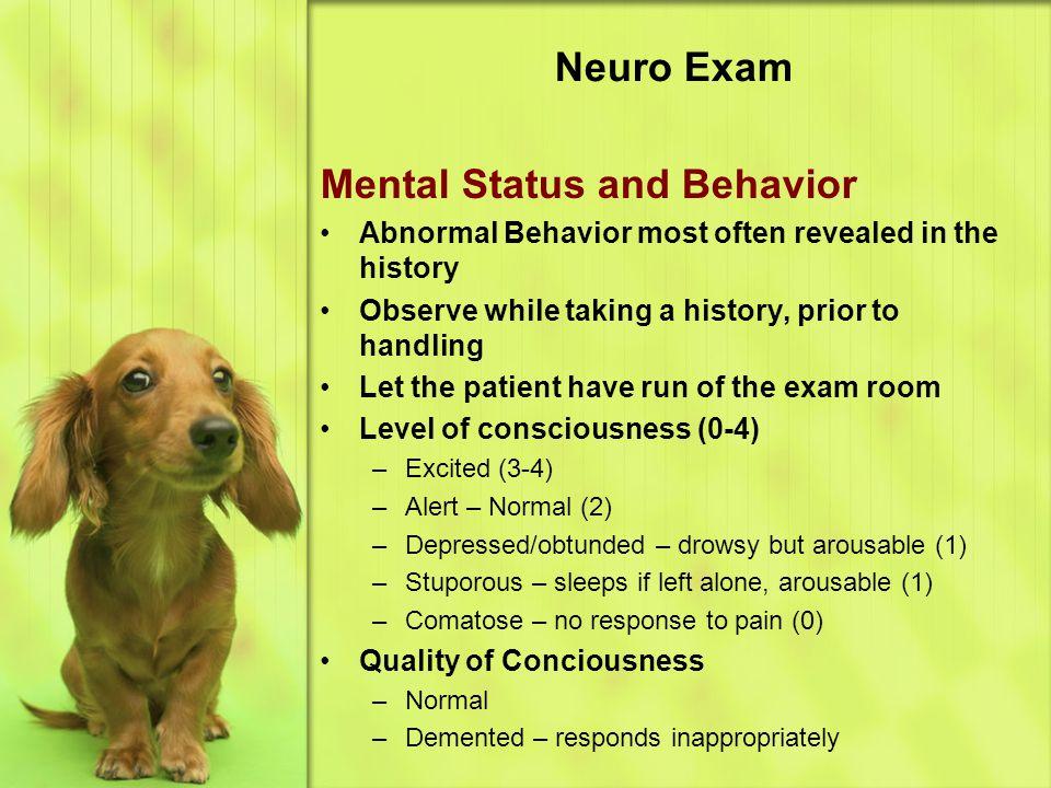 Mental Status and Behavior