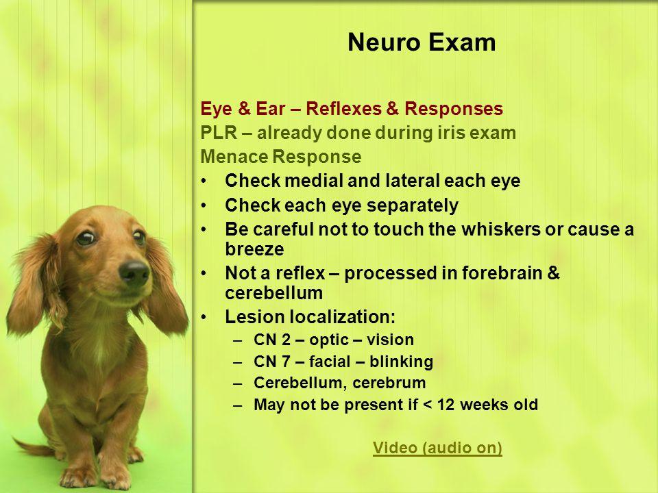 Neuro Exam Eye & Ear – Reflexes & Responses