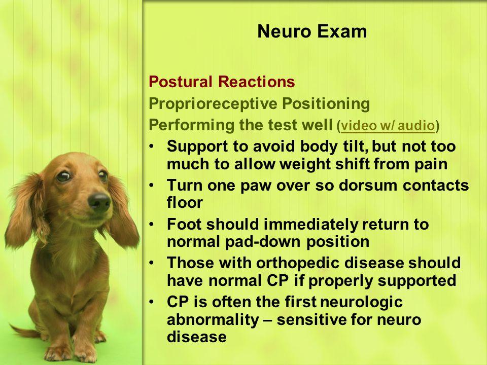 Neuro Exam Postural Reactions Proprioreceptive Positioning