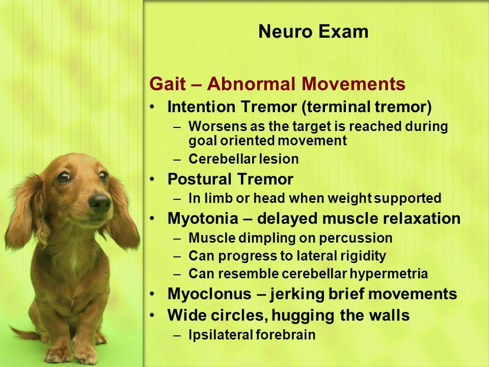 Gait – Abnormal Movements