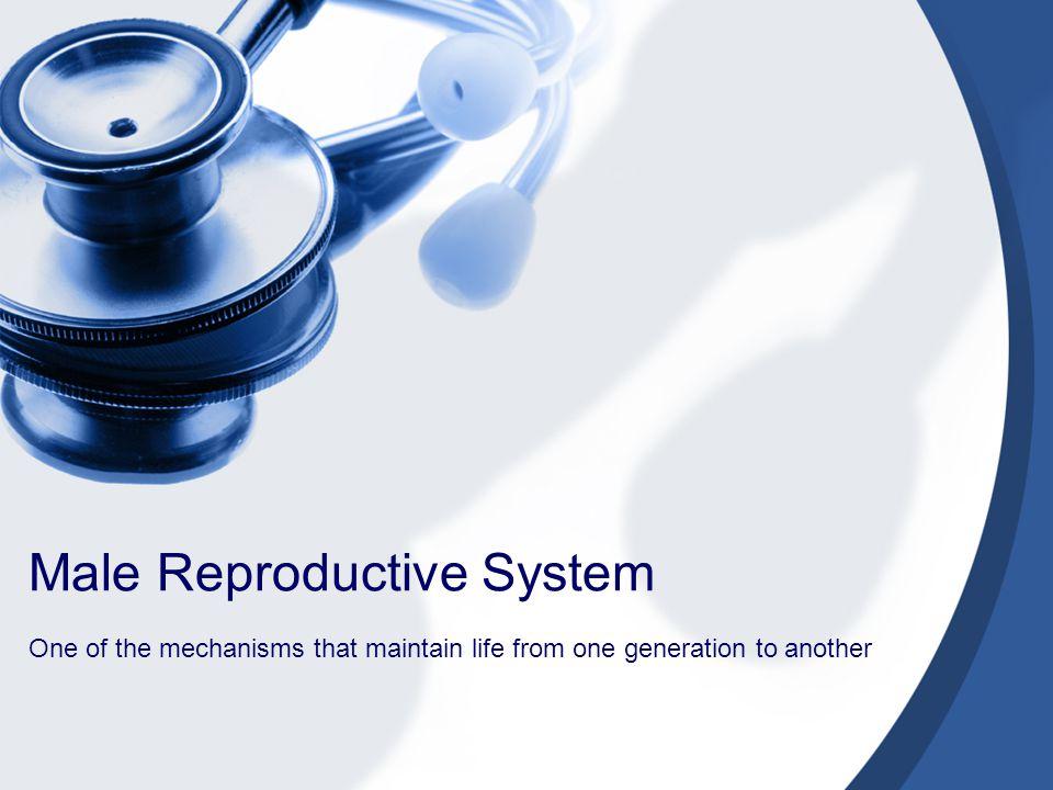 nursing management male reproductive problems