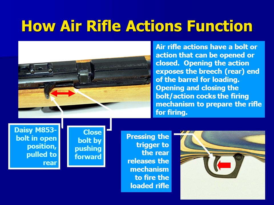 How Air Rifle Actions Function