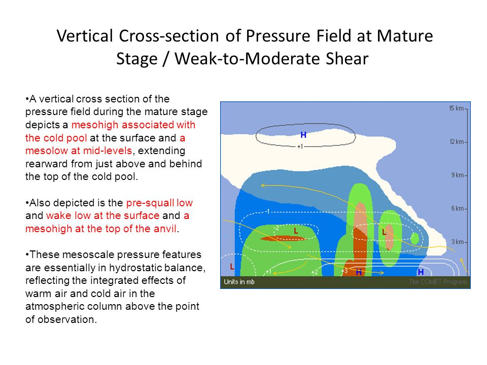 Vertical Cross-section of Pressure Field at Mature Stage / Weak-to-Moderate Shear