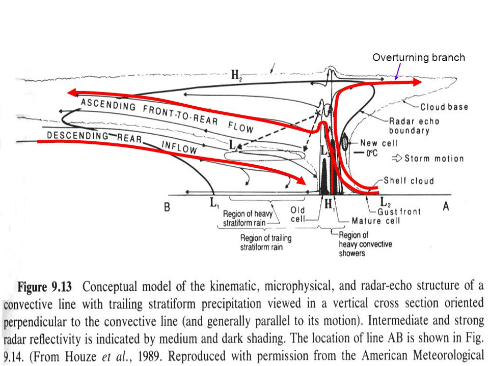 Conceptual Model Squall Lines with Trailing Stratiform Precipitation (Houze 1989)