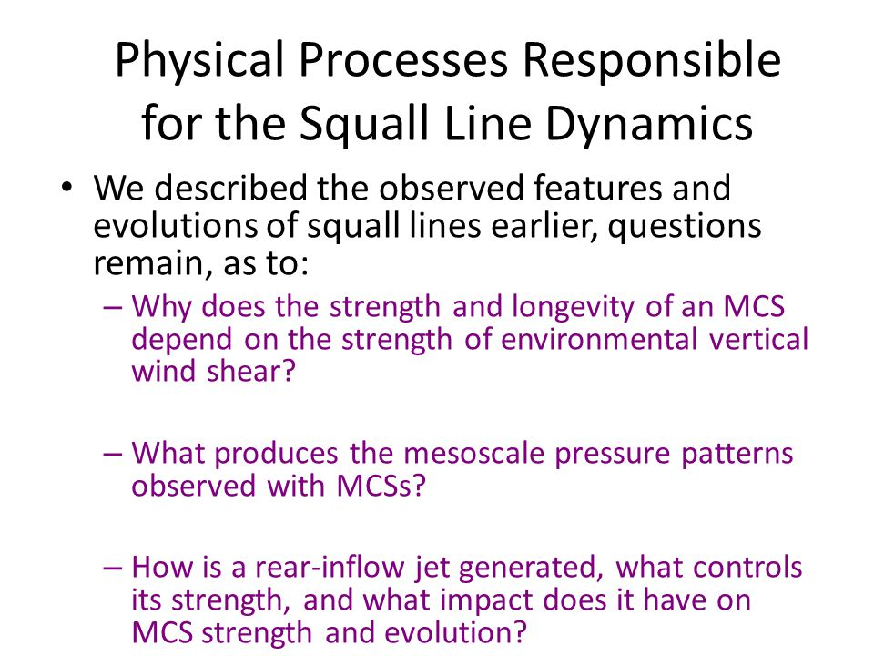 Physical Processes Responsible for the Squall Line Dynamics