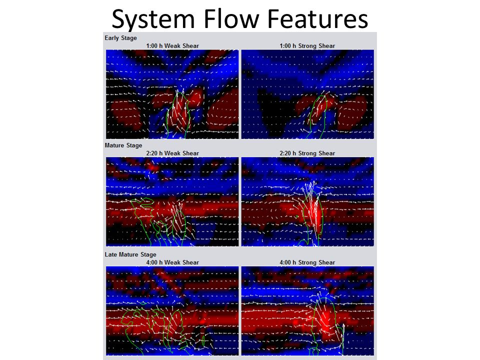 System Flow Features