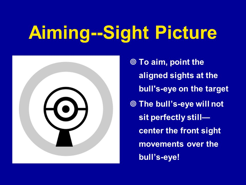 Aiming--Sight Picture