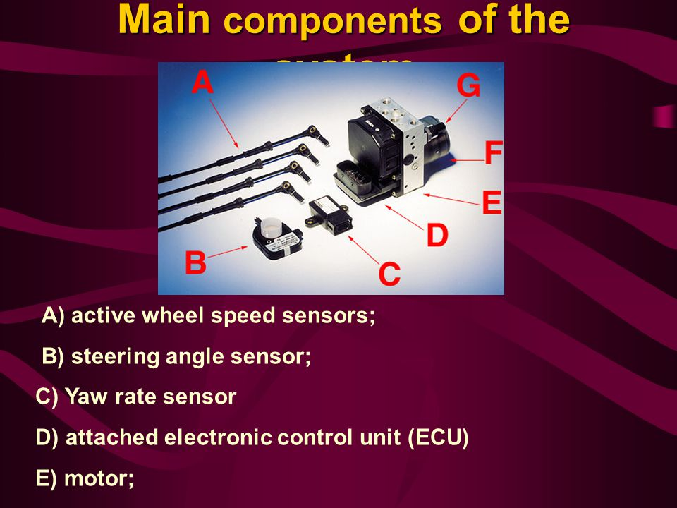 Main components of the system