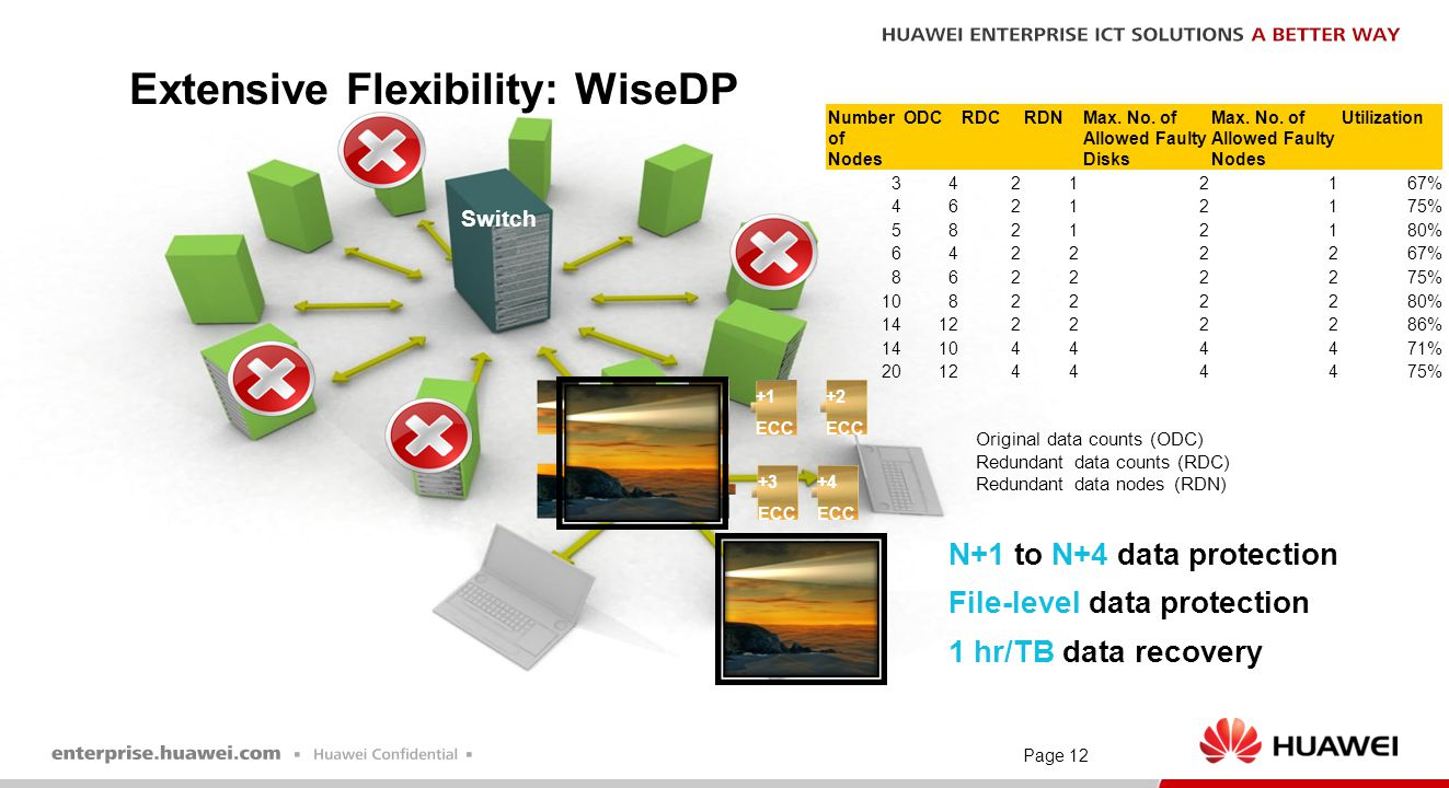 Extensive Flexibility: WiseDP