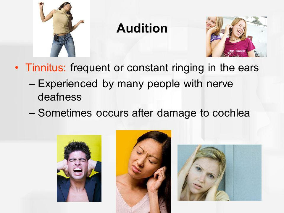 Audition Tinnitus: frequent or constant ringing in the ears