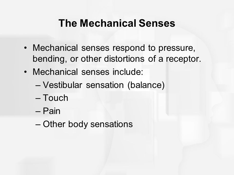The Mechanical Senses Mechanical senses respond to pressure, bending, or other distortions of a receptor.