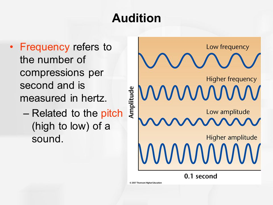 Audition Frequency refers to the number of compressions per second and is measured in hertz.