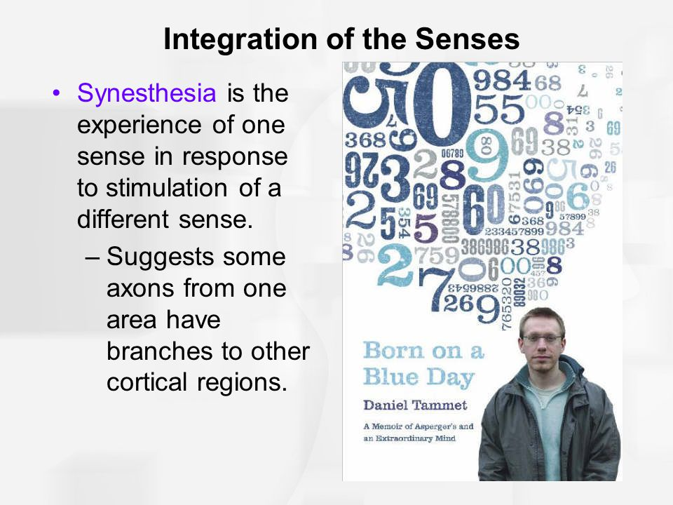 Integration of the Senses