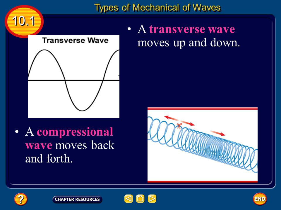 A transverse wave moves up and down.