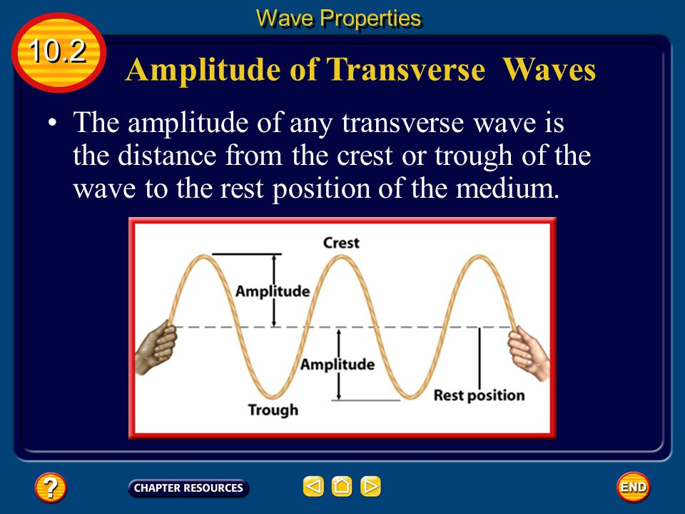 Amplitude of Transverse Waves