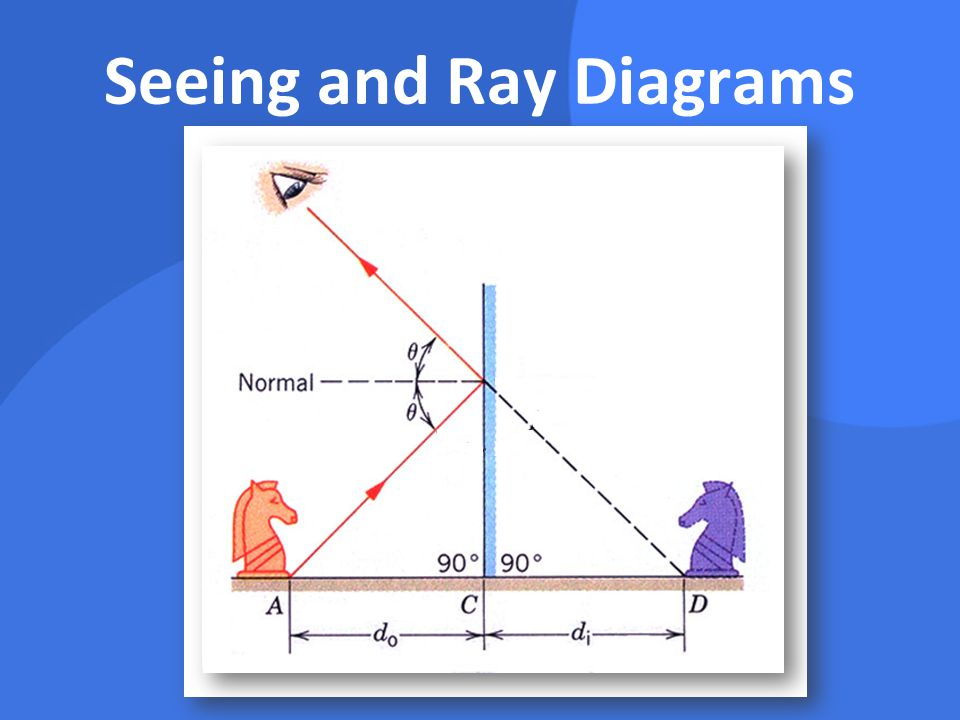 Seeing and Ray Diagrams
