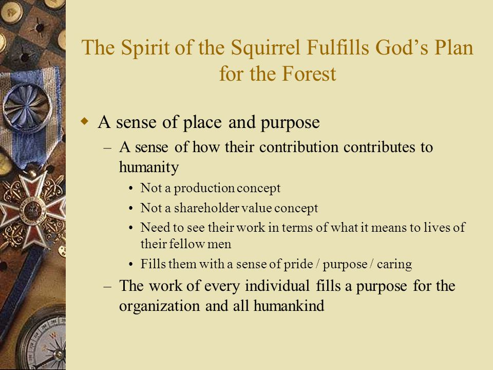 The Spirit of the Squirrel Fulfills God's Plan for the Forest