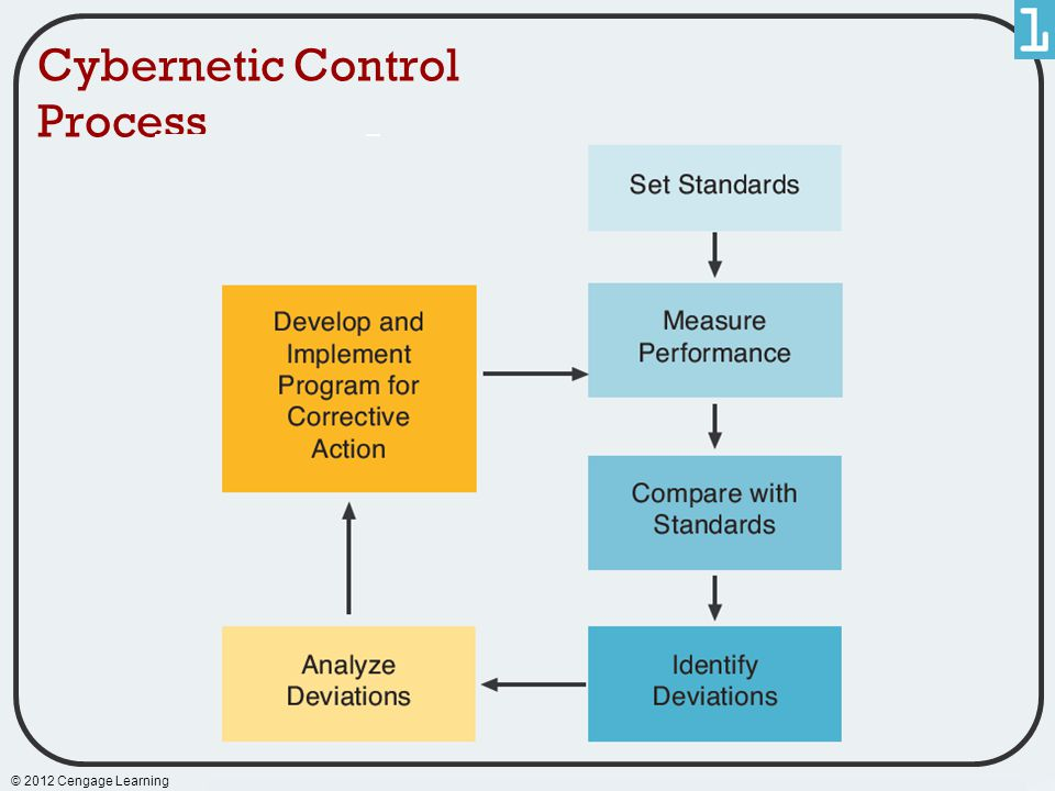 Cybernetic Control Process