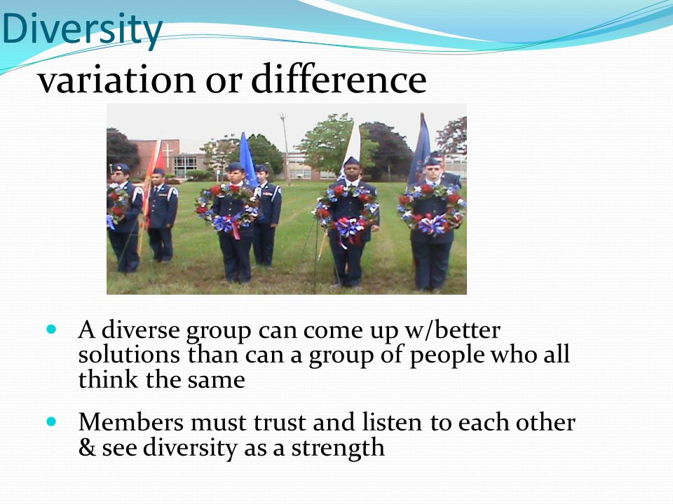 Diversity variation or difference