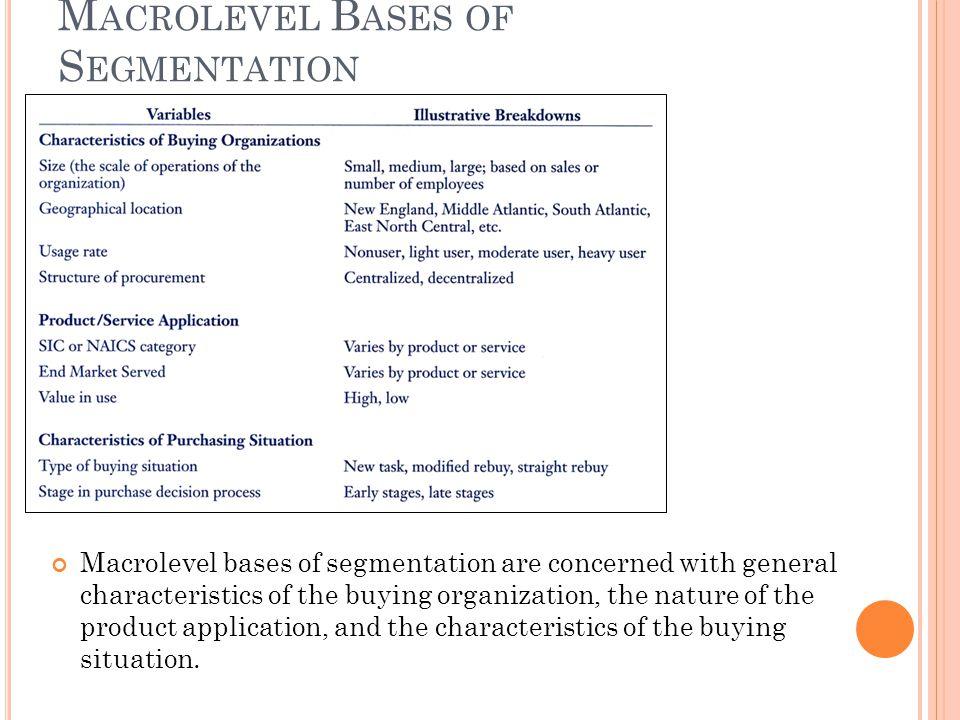 Macrolevel Bases of Segmentation