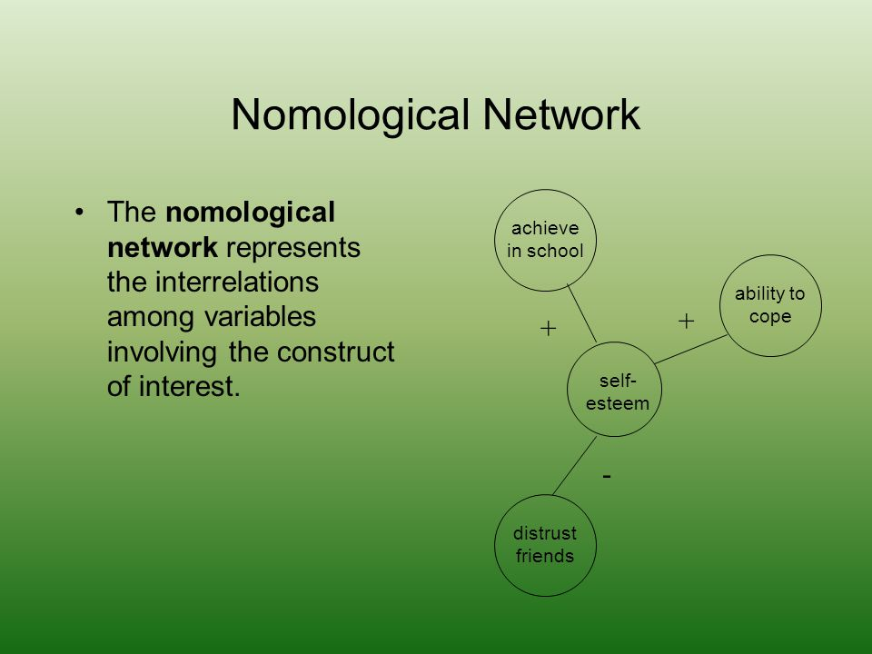 Nomological Network The nomological network represents the interrelations among variables involving the construct of interest.