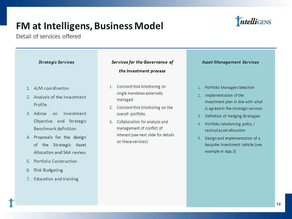 FM at Intelligens, Business Model Detail of services offered