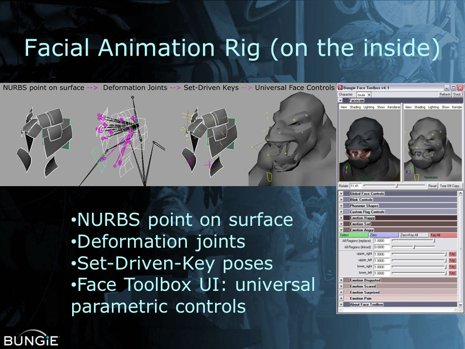 Facial Animation Rig (on the inside)