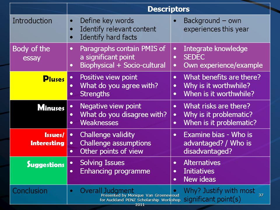 Pluses Minuses Suggestions Descriptors Introduction Body of the essay