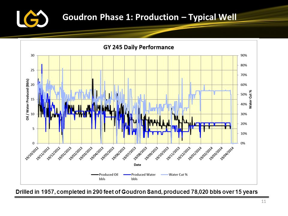 Goudron Phase 1: Production – Typical Well