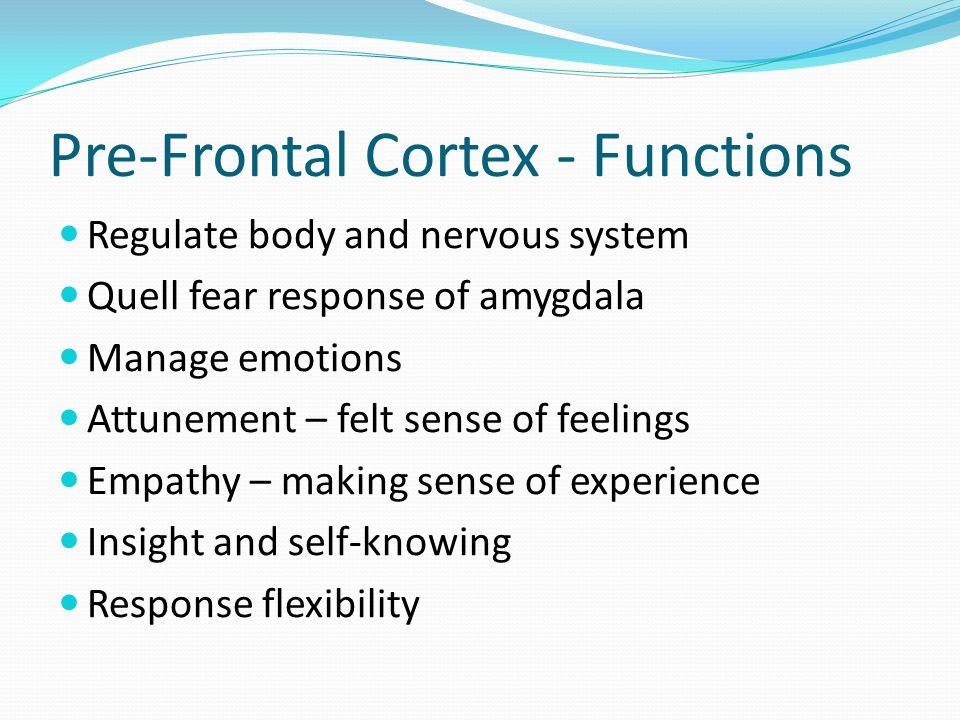 Pre-Frontal Cortex - Functions