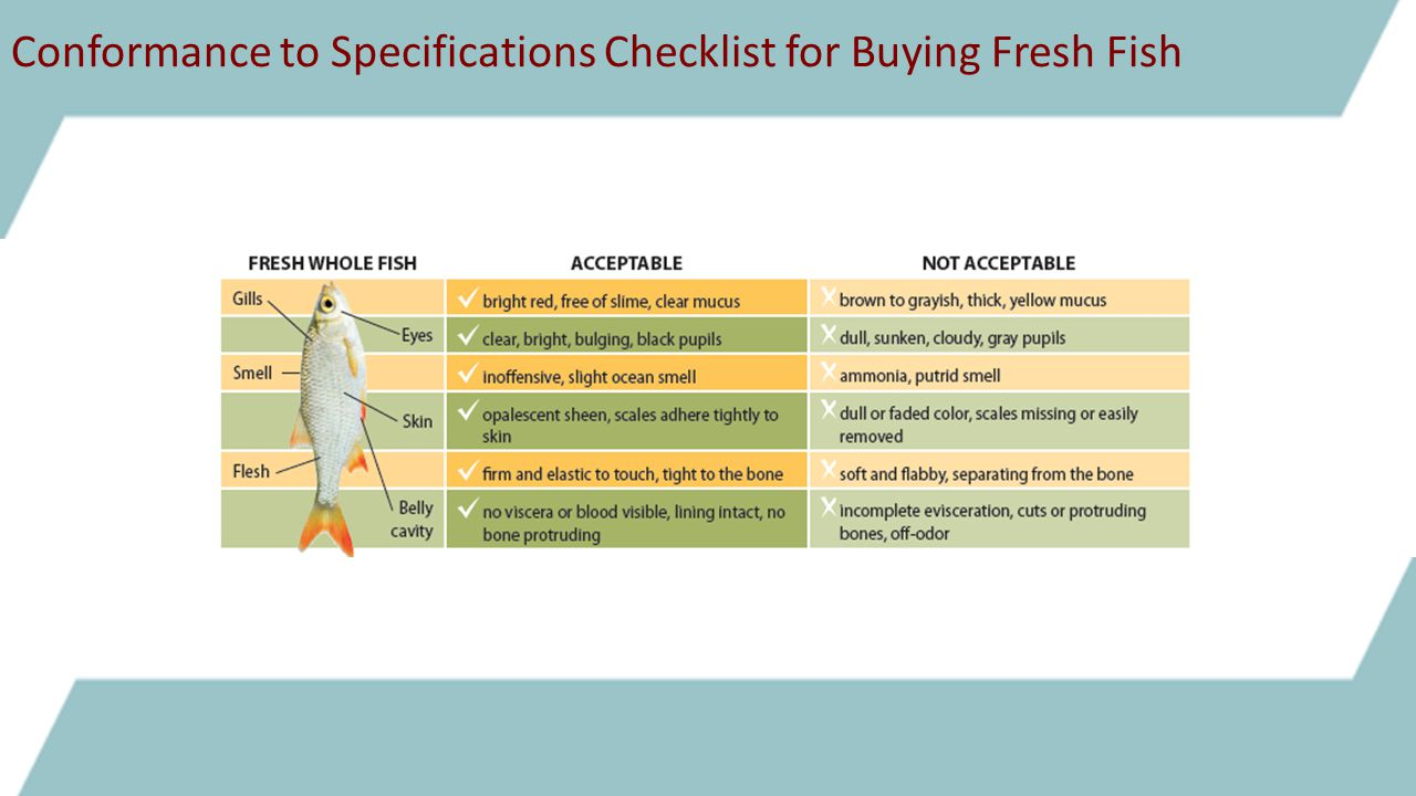 Conformance to Specifications Checklist for Buying Fresh Fish