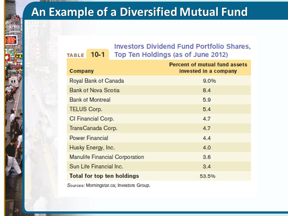 An Example of a Diversified Mutual Fund
