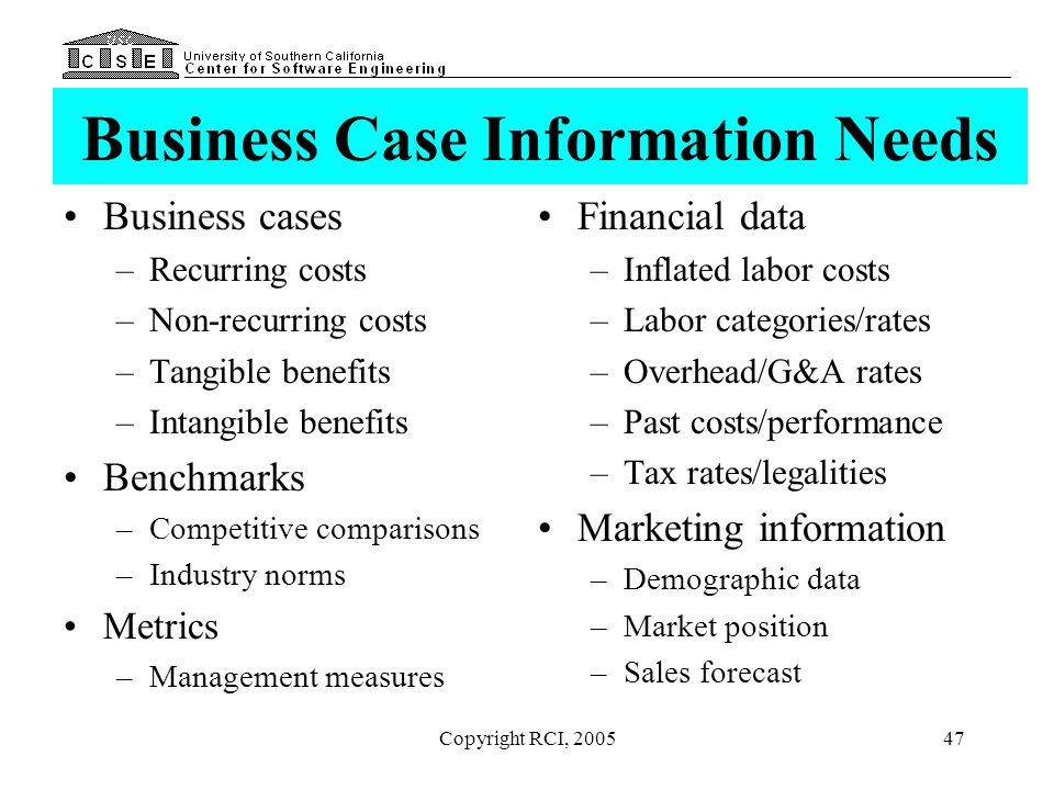 Business Case Information Needs