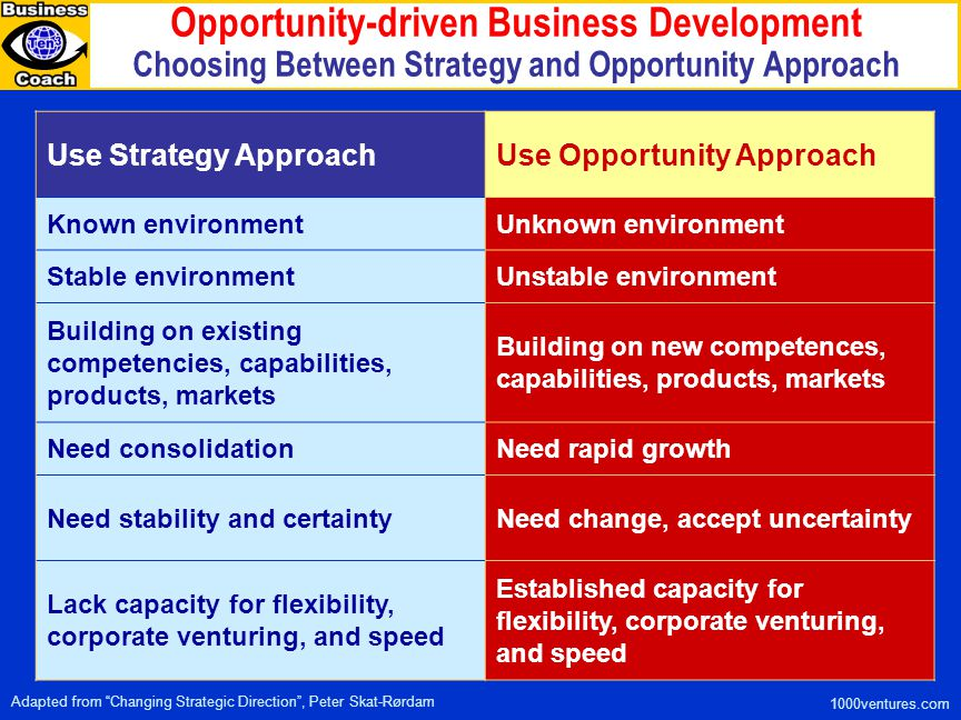Opportunity-driven Business Development Choosing Between Strategy and Opportunity Approach