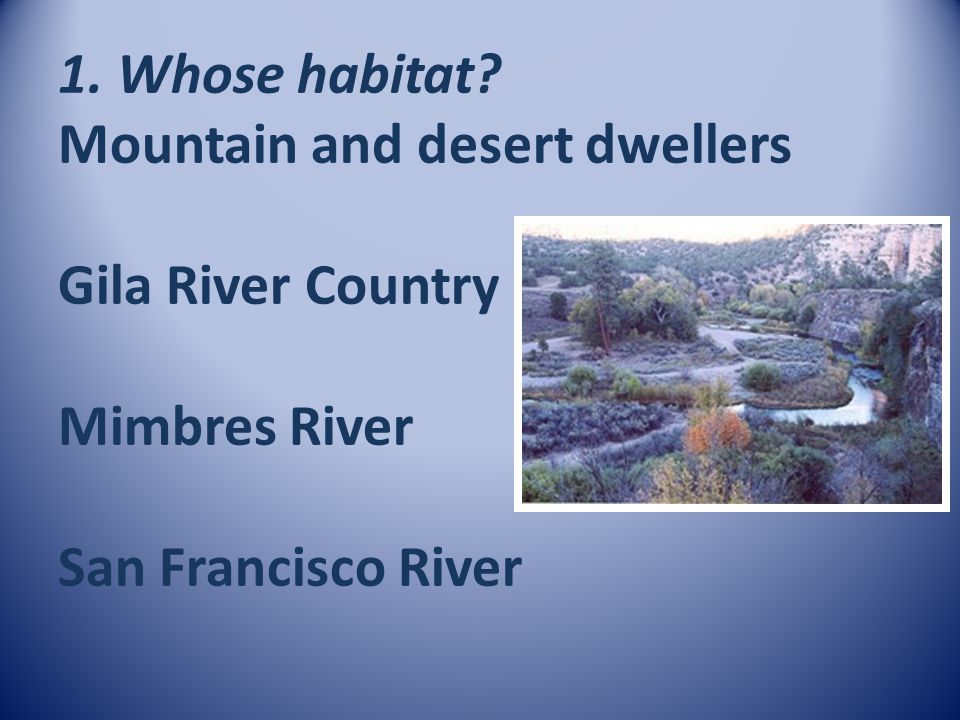1. Whose habitat Mountain and desert dwellers Gila River Country Mimbres River San Francisco River