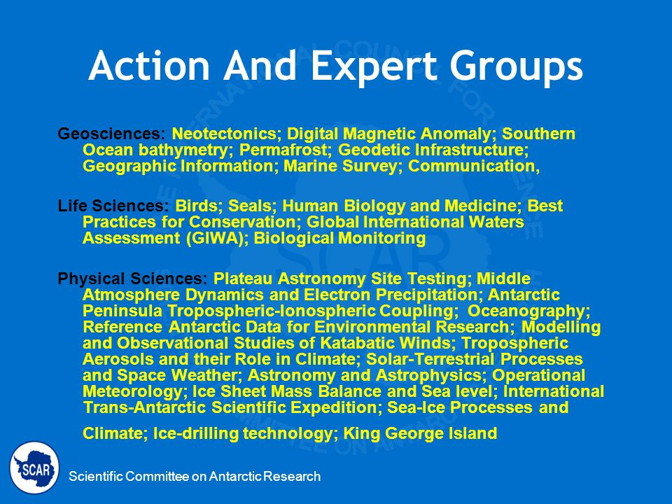 Action And Expert Groups