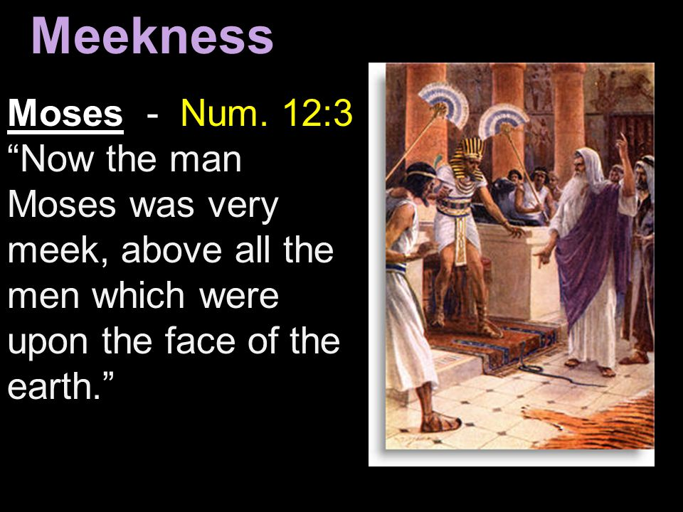 Meekness Moses - Num. 12:3 Now the man Moses was very meek, above all the men which were upon the face of the earth.