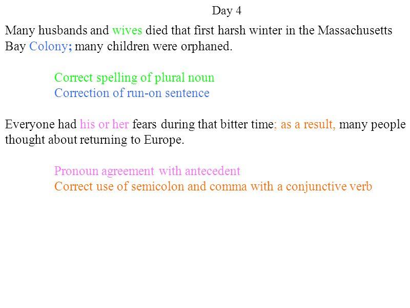 Correct spelling of plural noun Correction of run-on sentence