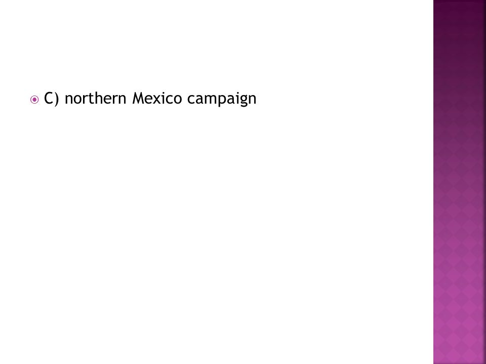 C) northern Mexico campaign