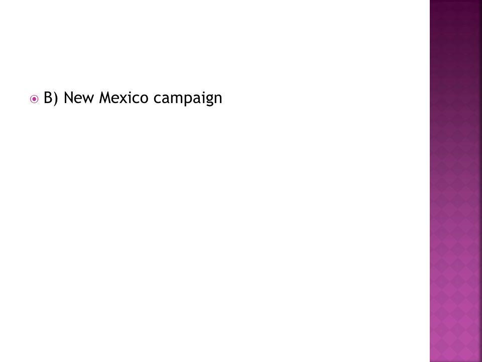 B) New Mexico campaign