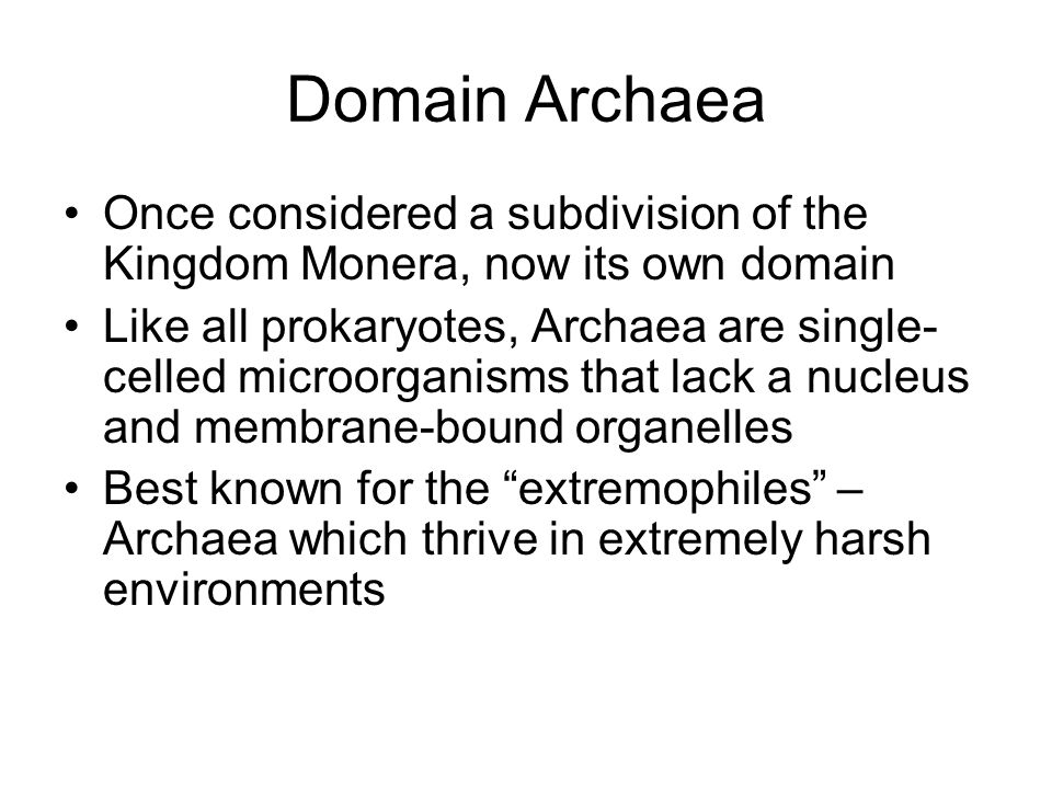 Domain Archaea Once considered a subdivision of the Kingdom Monera, now its own domain.