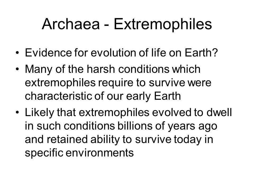 Archaea - Extremophiles