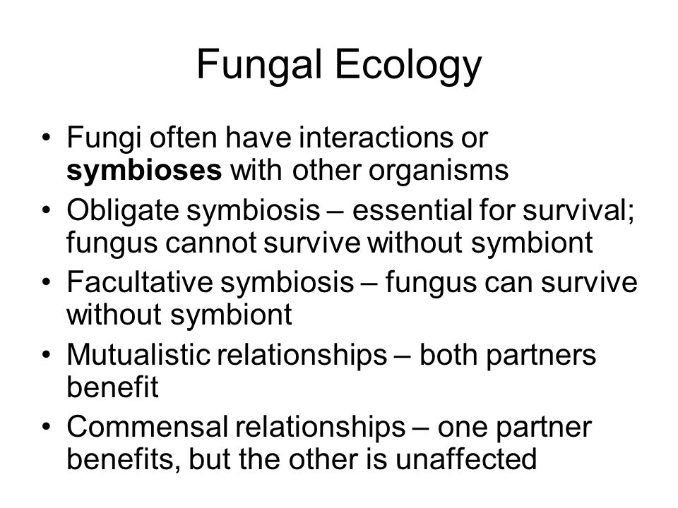 Fungal Ecology Fungi often have interactions or symbioses with other organisms.
