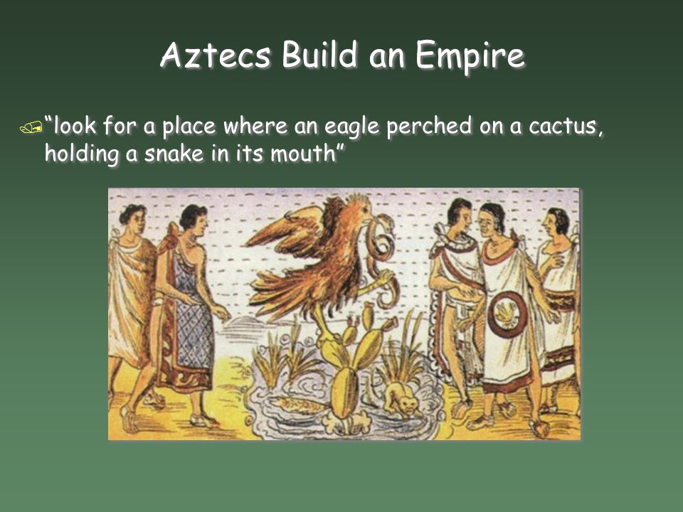 Aztecs Build an Empire look for a place where an eagle perched on a cactus, holding a snake in its mouth