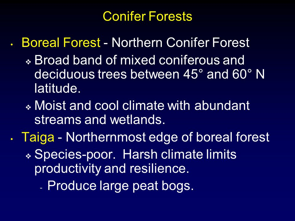 Conifer Forests Boreal Forest - Northern Conifer Forest. Broad band of mixed coniferous and deciduous trees between 45° and 60° N latitude.