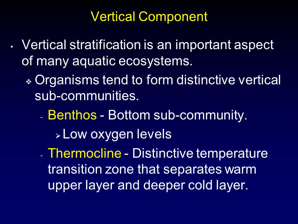 Vertical Component Vertical stratification is an important aspect of many aquatic ecosystems.