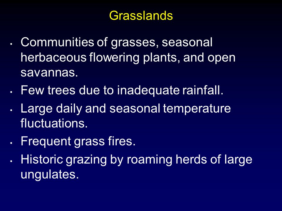 Grasslands Communities of grasses, seasonal herbaceous flowering plants, and open savannas. Few trees due to inadequate rainfall.