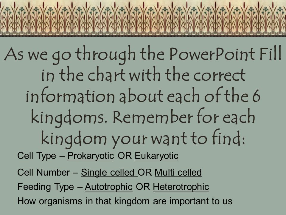 As we go through the PowerPoint Fill in the chart with the correct information about each of the 6 kingdoms. Remember for each kingdom your want to find: