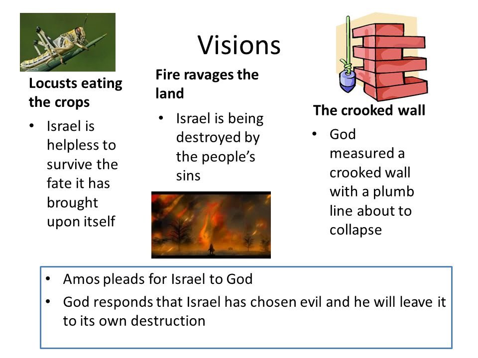 Visions Locusts eating the crops Fire ravages the land