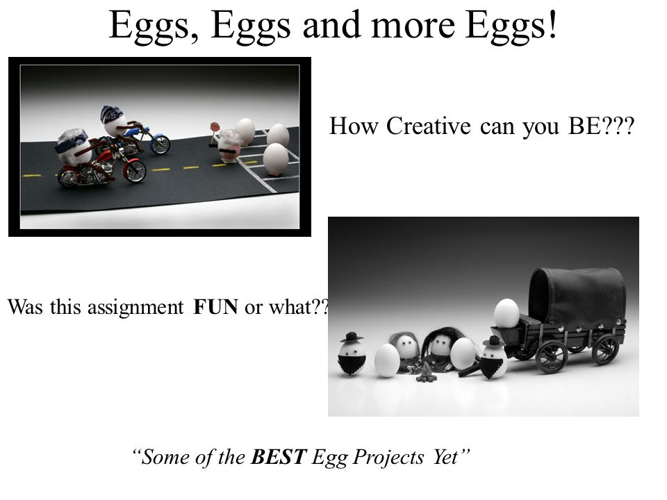 Eggs, Eggs and more Eggs! How Creative can you BE
